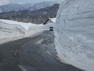 スキー場周辺5.jpg